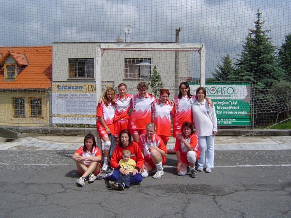 Ženy - oblastní přebor:  Zleva nahoře: Ivana, Kytka, Ivana, Šárka, Lenka, Lenka  Zleva dole: Ivana, Bláža, Radka, Vlastina